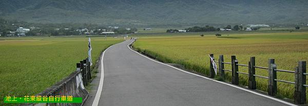 台東。池上,花東縱谷自行車道