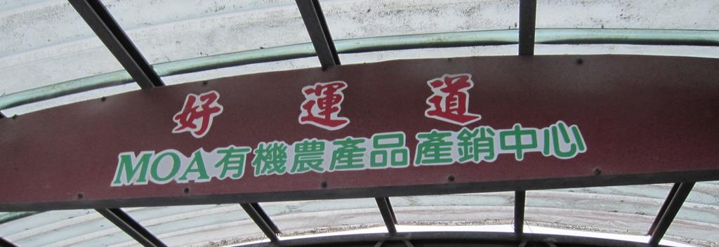 遊記 台東 好運道民宿