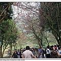 nEO_IMG_IMG_0333.jpg