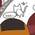 0825_cat02.jpg