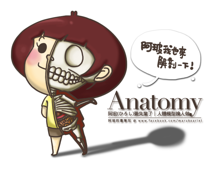 Jason Freeny 解剖學-19