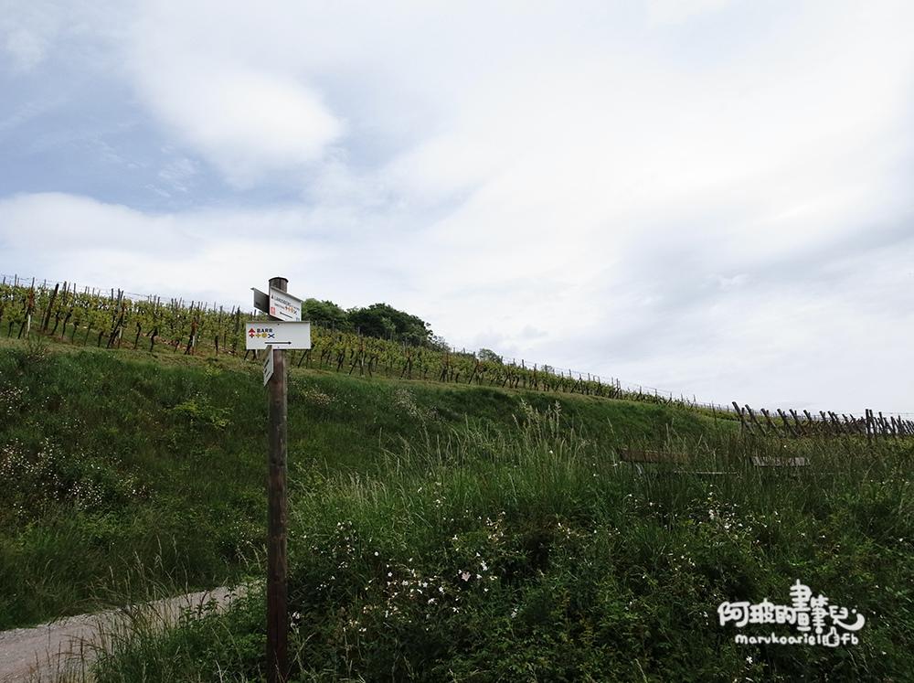 0626-France-08.jpg