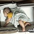 Doomoo Basics外出嬰兒床 之 LAVIDA育兒好好玩