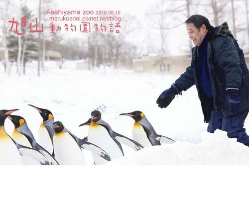 0811_旭山動物園08.jpg