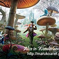 Alice in Wonderland (1).jpg