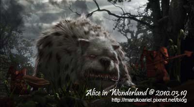 Alice in Wonderland (7).jpg
