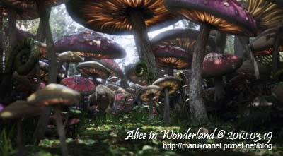 Alice in Wonderland (9).jpg