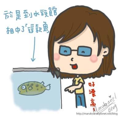 0426_食人魚4.jpg