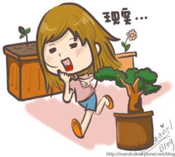 0518_大姐的祕密花園4.jpg