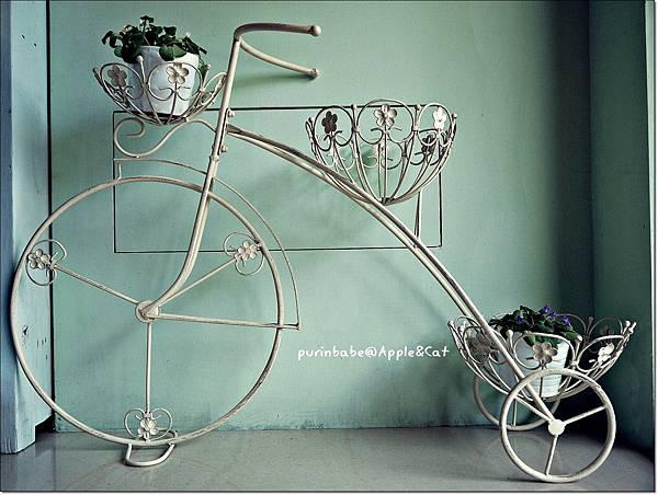 14入門腳踏車裝飾.JPG