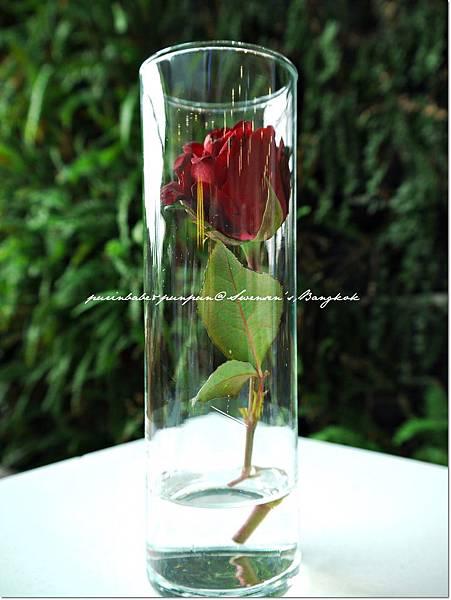 4玫瑰.JPG
