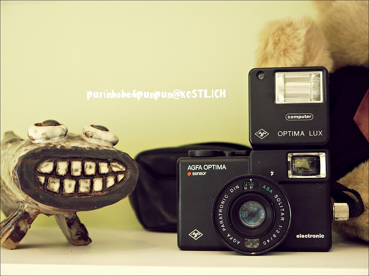 11相機收藏