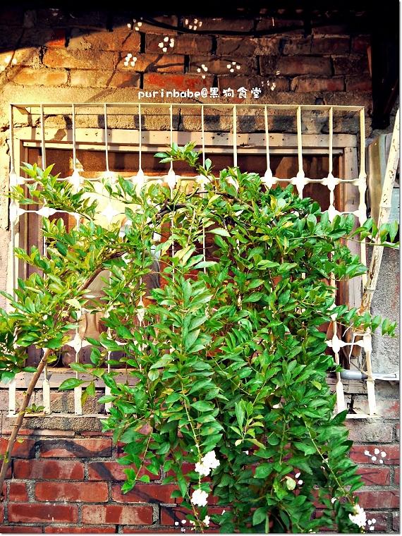 4鐵窗綠意