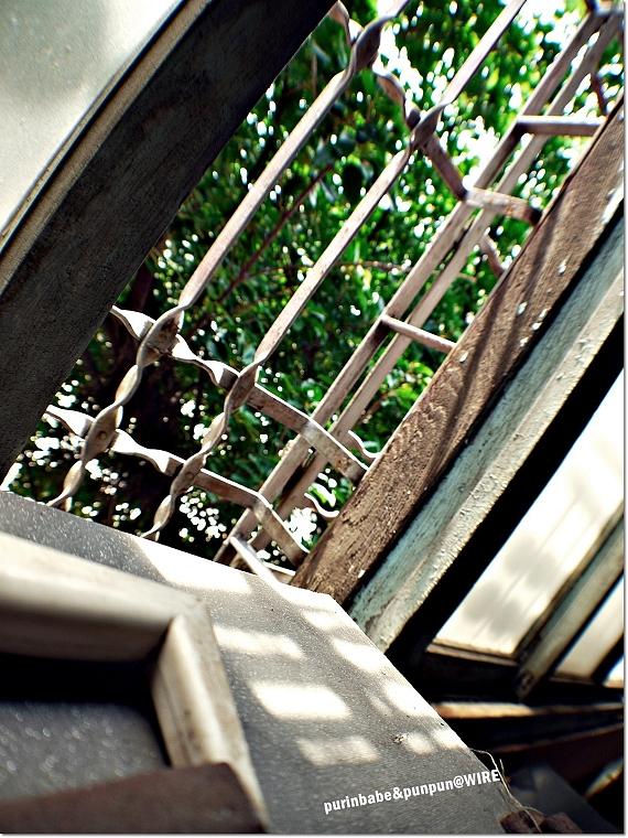 21三樓窗影