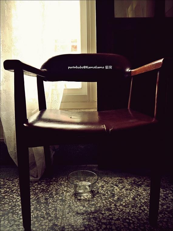 24單人皮椅