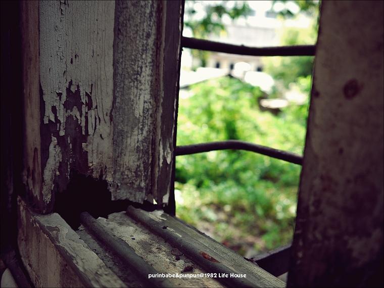34窗外綠意