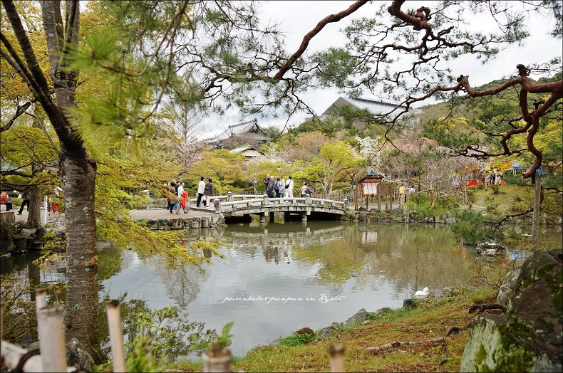 16圓山公園2