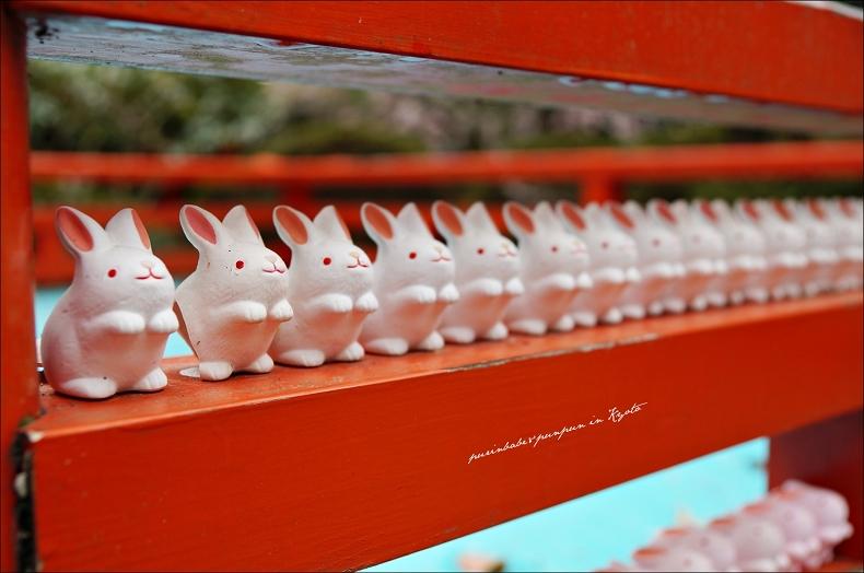 36岡崎神社的兔子1