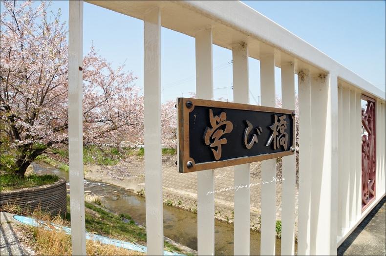 11學び橋1