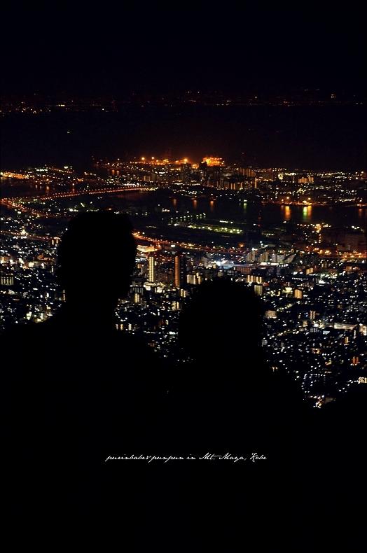 32摩耶山掬星台賞夜景