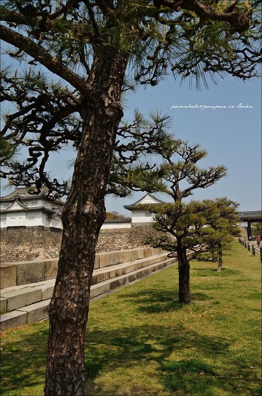 10望向大阪城1