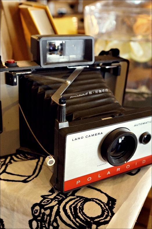 31相機1
