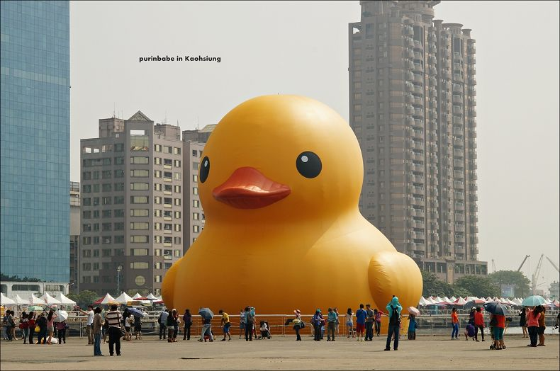 3黃色小鴨1
