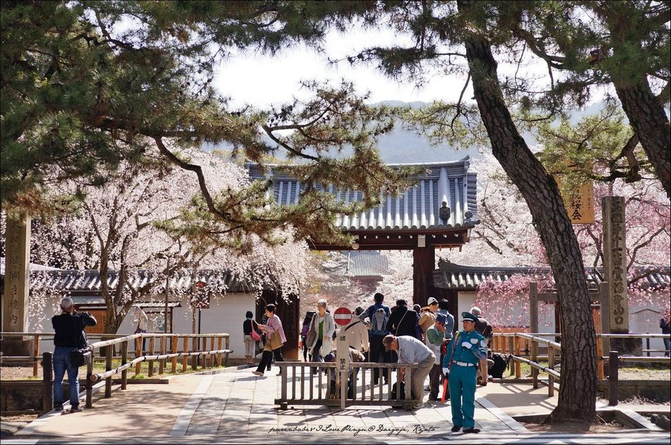 3醍醐寺正門