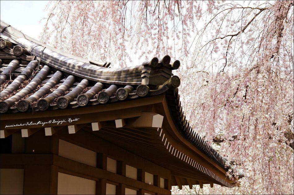 26醍醐寺靈寶館5
