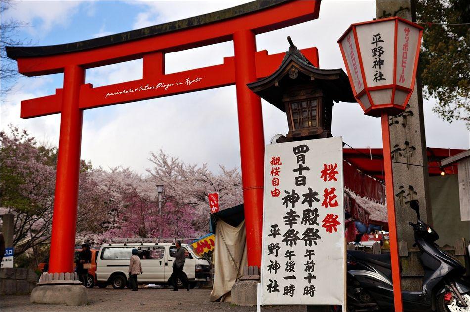 3平野神社櫻花祭
