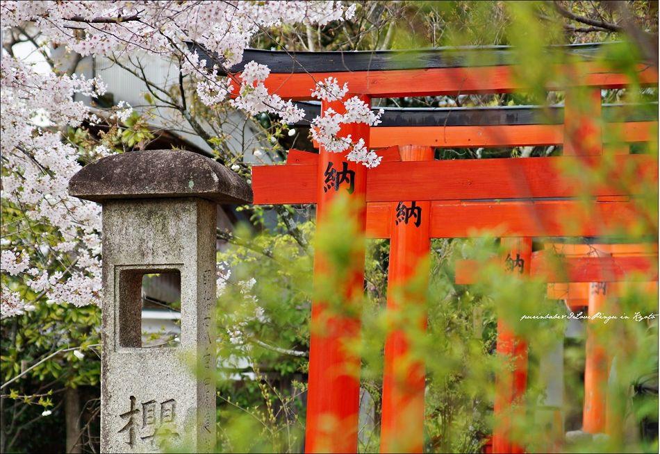 16平野神社境內3