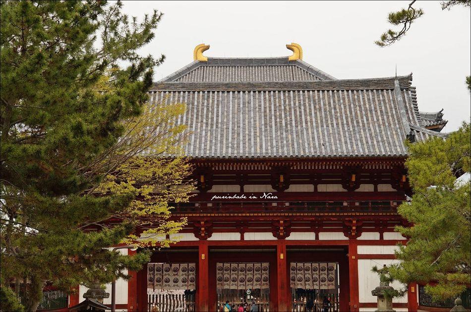 42東大寺大佛殿1
