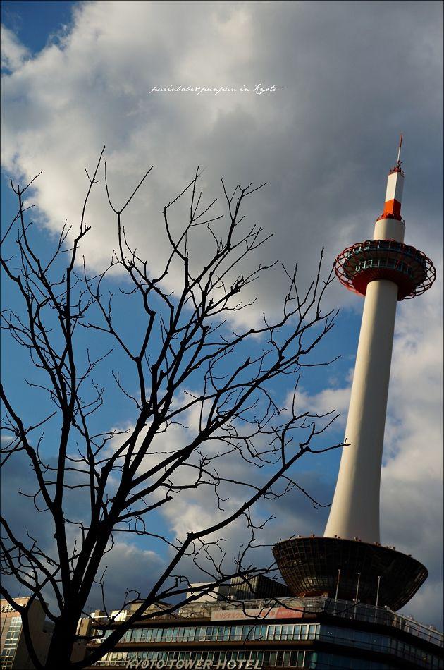 2京都塔1