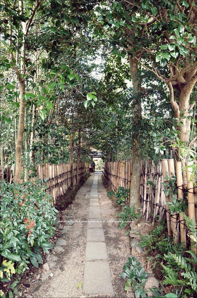 6竹籬小路