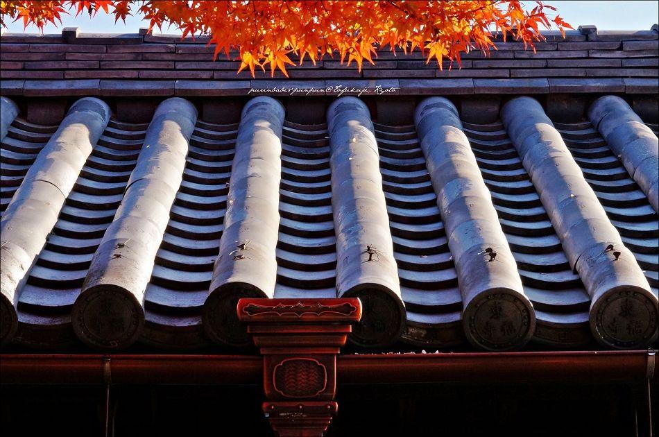 35東福寺之楓12