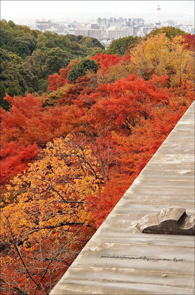 13京都塔1