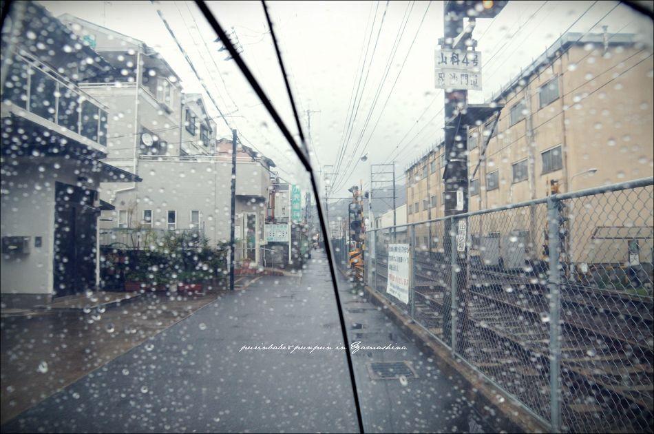 15山科大雨