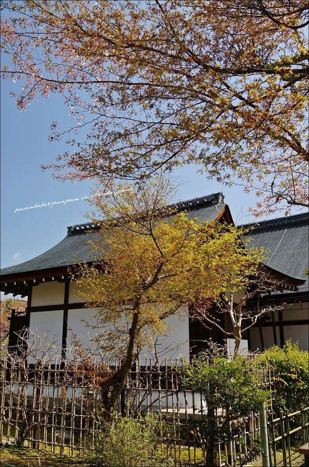 15天龍寺庭園建築1