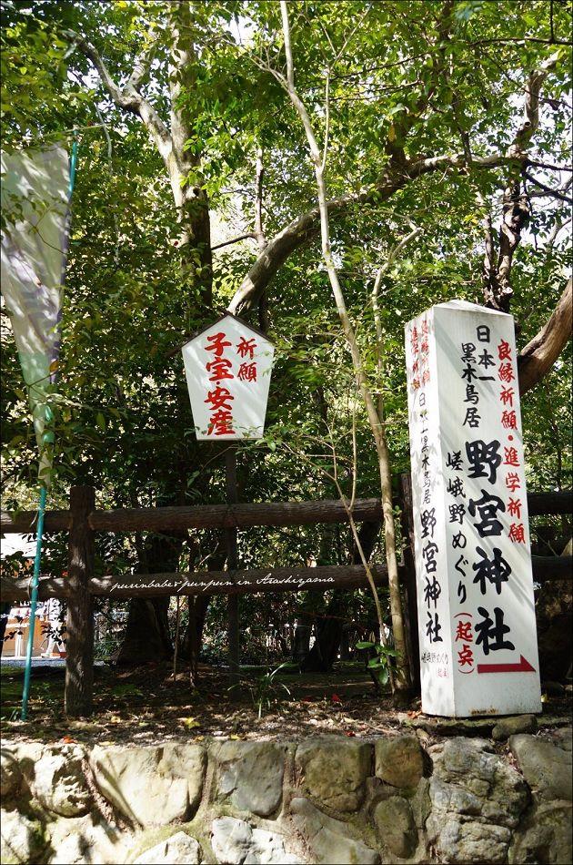 25野宮神社1