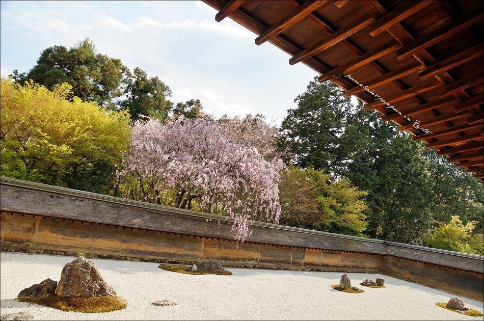 18龍安寺方丈石庭2