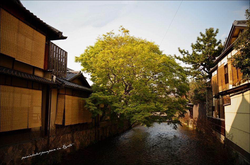 30祇園白川1