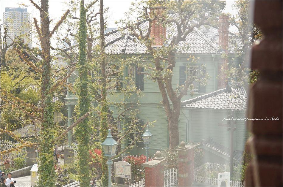 29萌黃之館