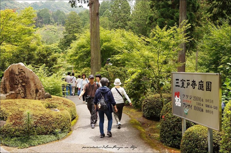 12三室戶寺庭園1