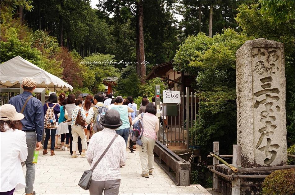5三室戶寺入口