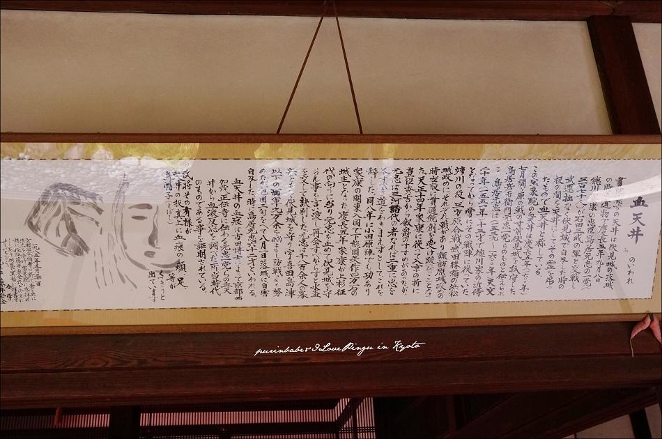 30血天井介紹2