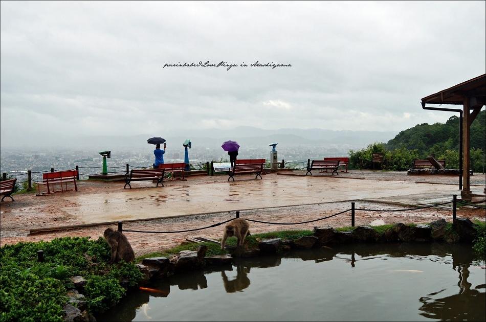16嵐山猴子公園全景3