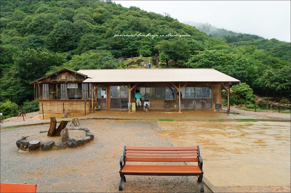 14嵐山猴子公園全景1