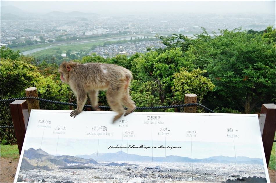 17俯瞰京都1