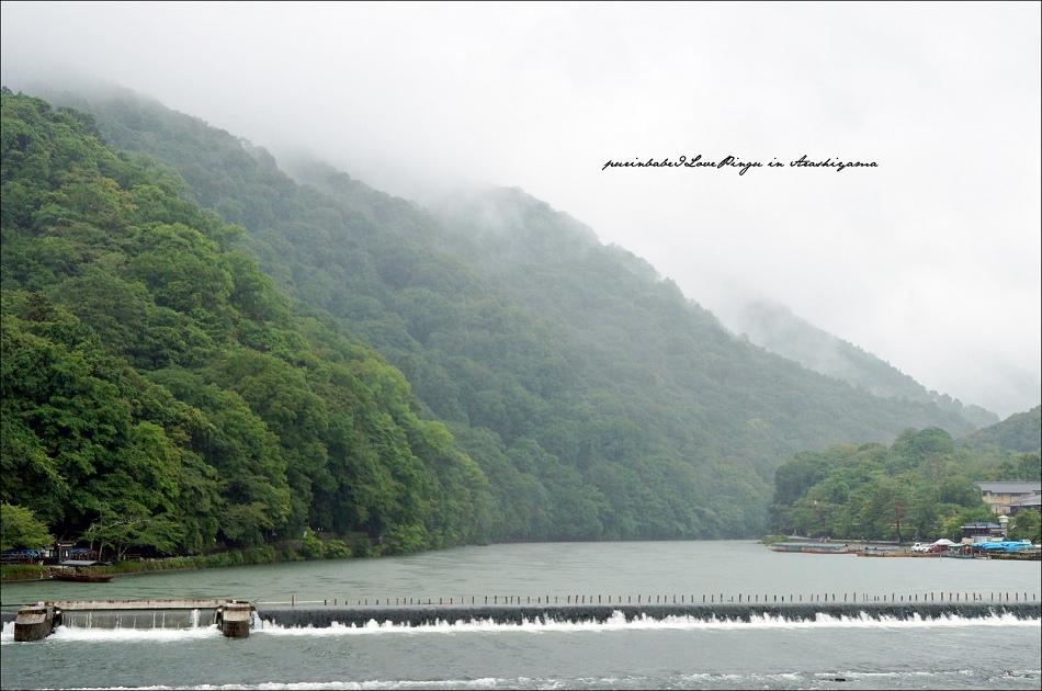 4山嵐嵐山3
