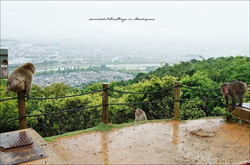 18俯瞰京都2